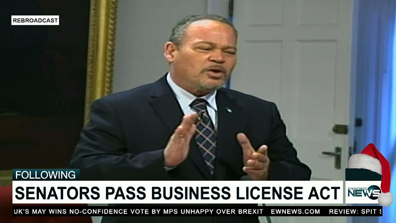 Senators pass amendments to Business License Act
