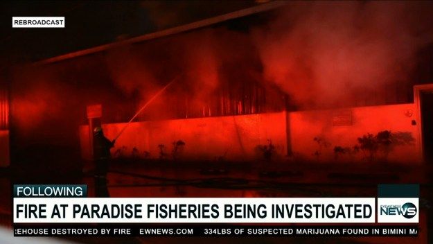 Fire dept. still investigating cause of blaze at Paradise Fisheries