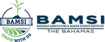 BAMSI hosts trip to North Andros agricultural facility