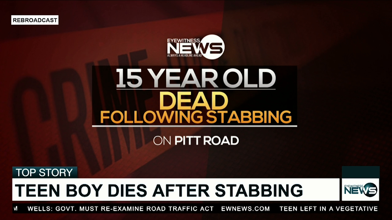 Teen dies after stabbing altercation