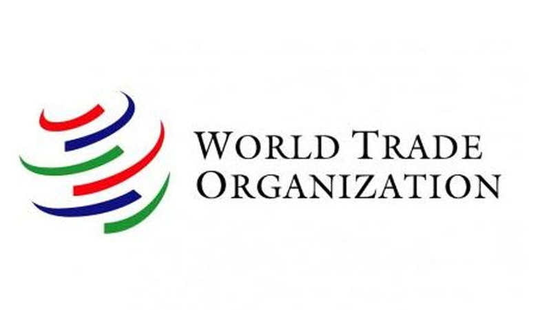 Laing: No WTO accession this term