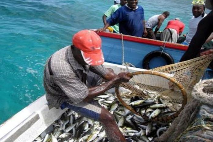 """""""How will I feed my family?"""" asks Bahamian woman married to foreign fisherman"""