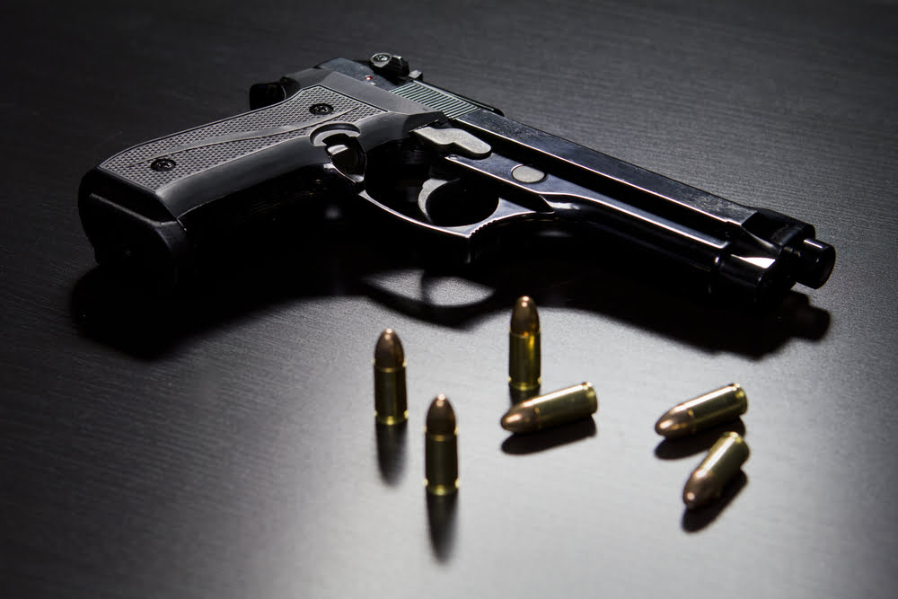 """House speaker calls for """"dragnet"""" sweep of NP for illegal firearms"""