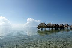 Tahiti - manihi morning calm 凪
