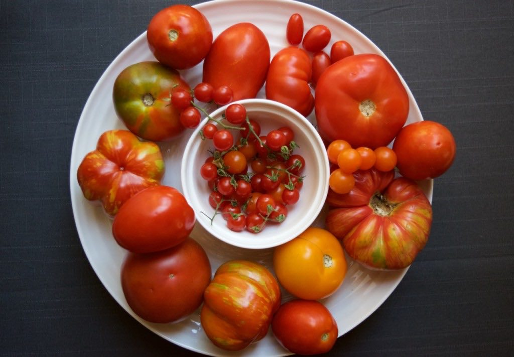 Tomatoes sauce preserves