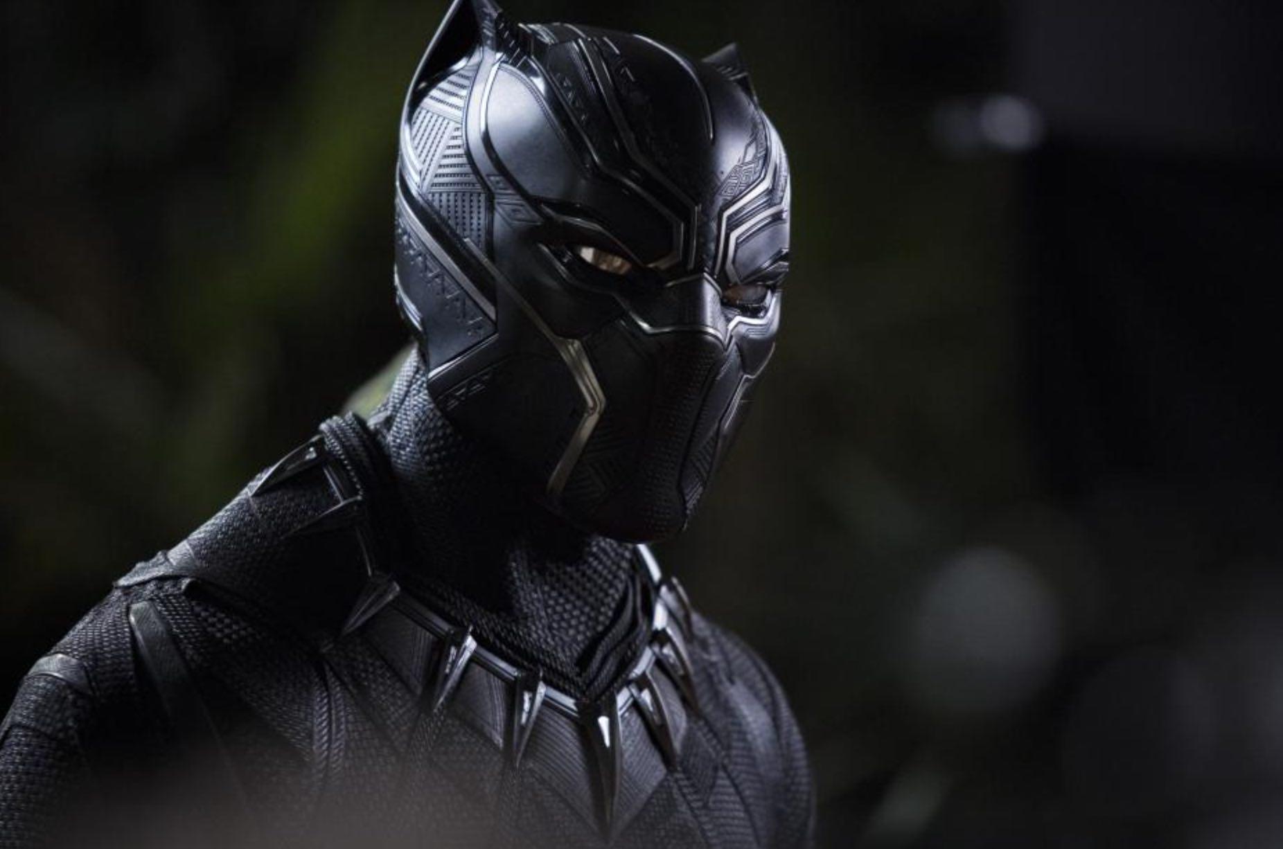 Black Panther Chadwick Boseman Marvel Comic