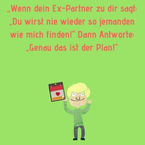 """Ex Spruch - """"Wenn dein Ex-Partner zu dir sagt """"Du wirst nie wieder so jemanden wie mich finden!"""" Dann Antworte """"Genau das ist der Plan!"""""""