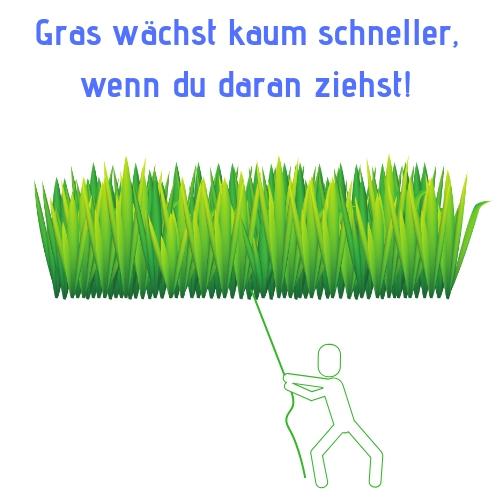 Gras wächst kaum schneller, wenn du daran ziehst!