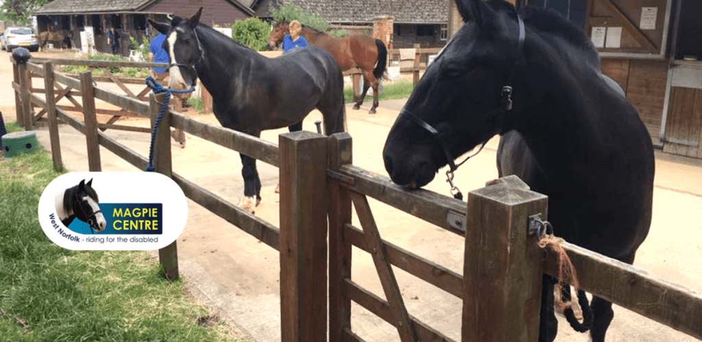 ExaClair Supports Horse Riding Charity