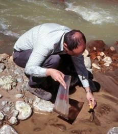 Geología: cargo de Profesor Ordinario Adjunto