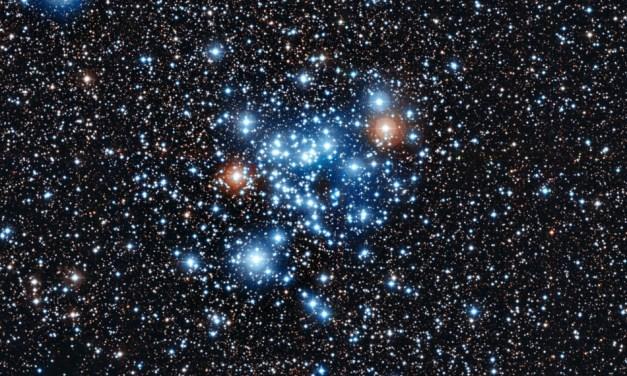 Actividad estelar en estrellas FGK de secuencia principal