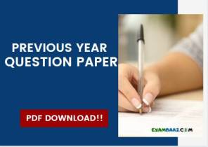 previous year question paper
