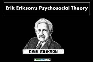 Erikson Theory of Psychosocial Development