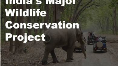 Photo of India's Major Wildlife Conservation Project || वन्यजीव संरक्षण परियोजना
