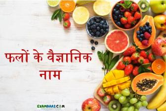 List of All Scientific Name of Fruits || फलों के वैज्ञानिक नाम