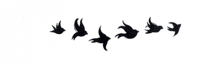 flying birds emerging communication issues animals menu main bread