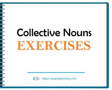 Collective-nouns-exercises