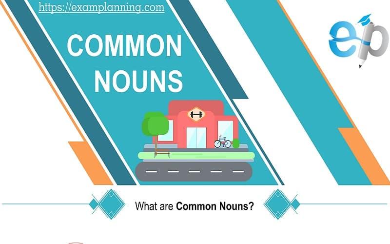 COMMON NOUNS
