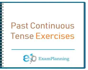 Past Continuous Tense Exercises