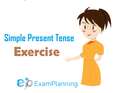 Simple Present Tense Exercise