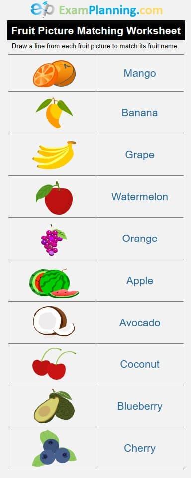 Fruit Picture Matching Worksheet