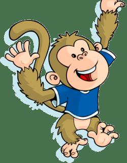 Monkey_300