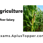 IBPS Agriculture Field Officer Salary