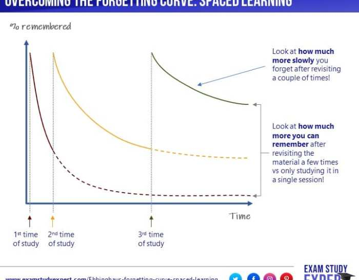Ebbinghaus' forgetting curve explained: the importance of spaced learning for memory