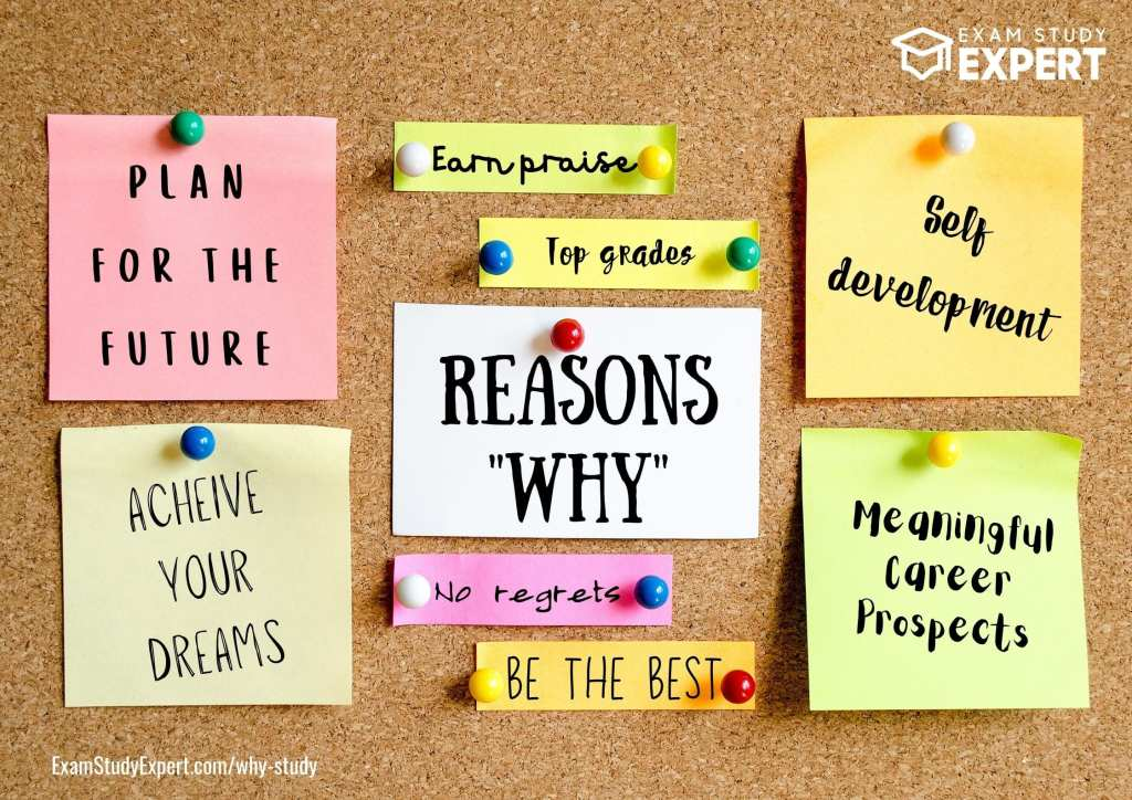 reasons to study