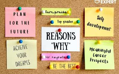 Why Study: Get Inspired With 17 Reasons & Benefits