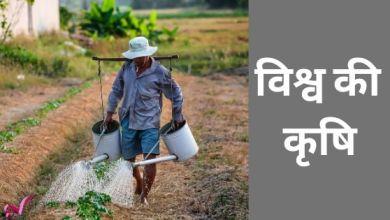 Photo of विश्व की कृषि