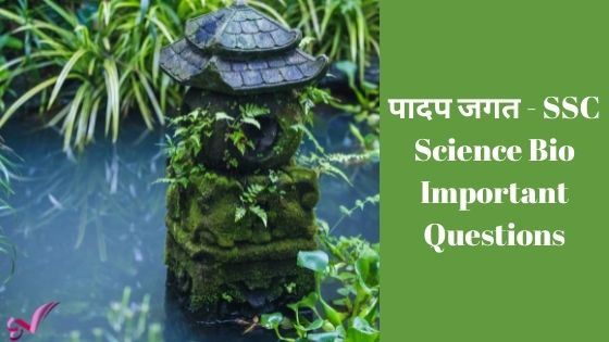पादप जगत - SSC Science Bio Important Questions