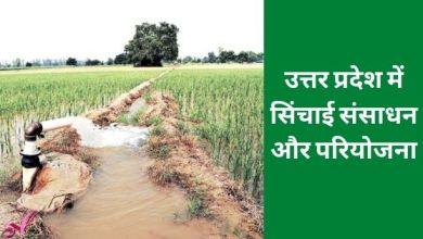 Photo of उत्तर प्रदेश में सिंचाई संसाधन और परियोजना