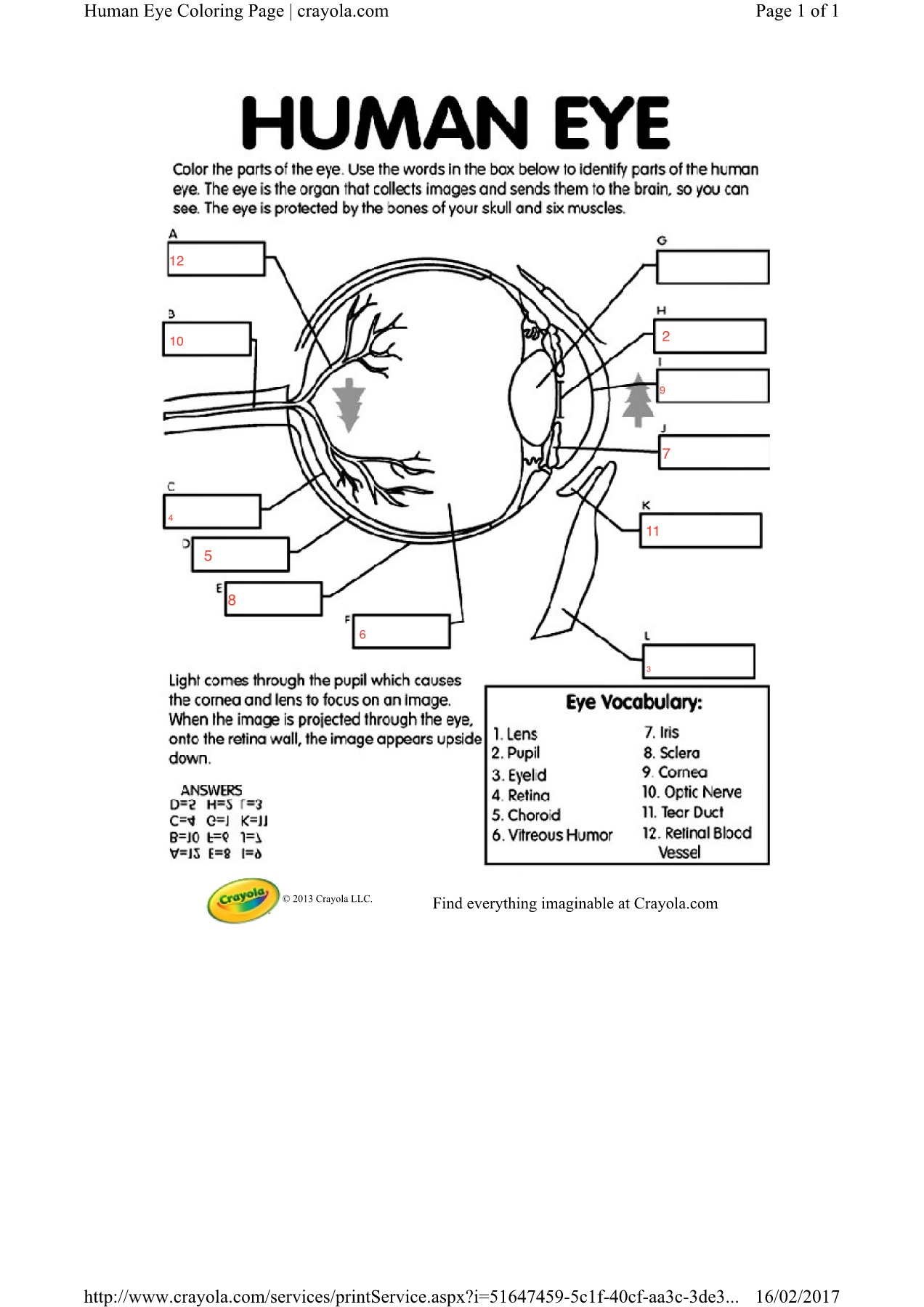 Eagle Eye Wiring Diagram. how to connect wire to angel