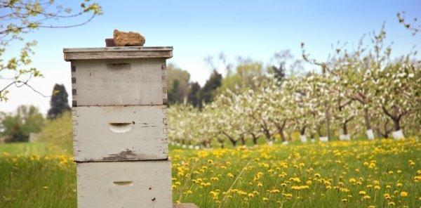 Τα Προϊόντα μας για τους Μελισσοκόμους