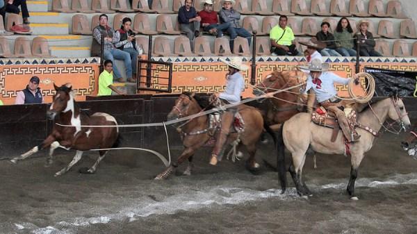 Pablo Cerón de Rancho La Biznaga acertando mangana a caballo rematando de espaldas a la yegua