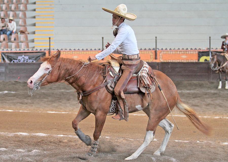 El calador de Rancho San José