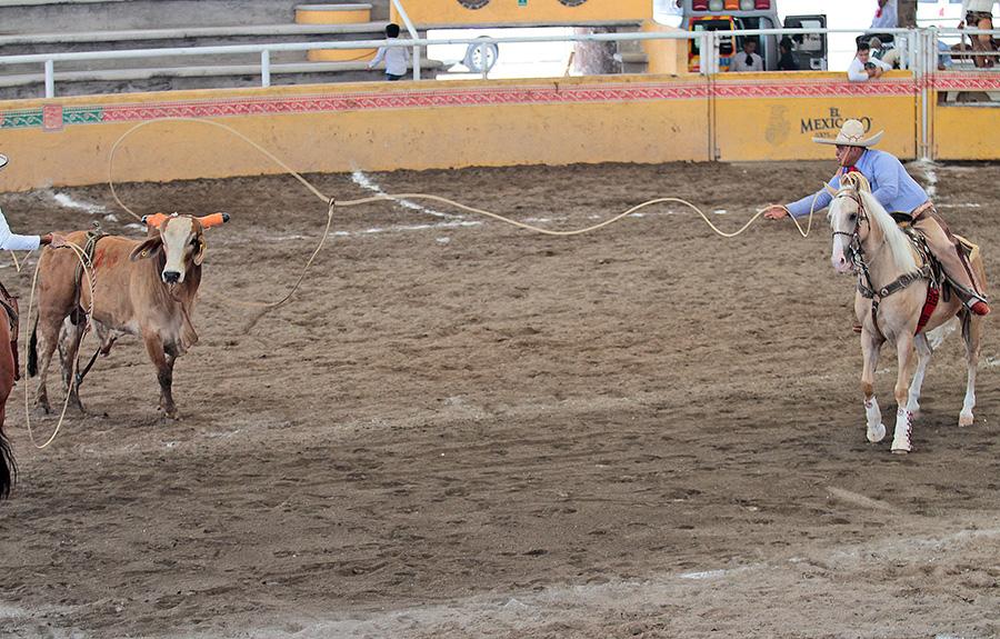 Diego Muñoz destacó con este larguísimo lazo de cabeza durante la terna en el ruedo de Tres Ases