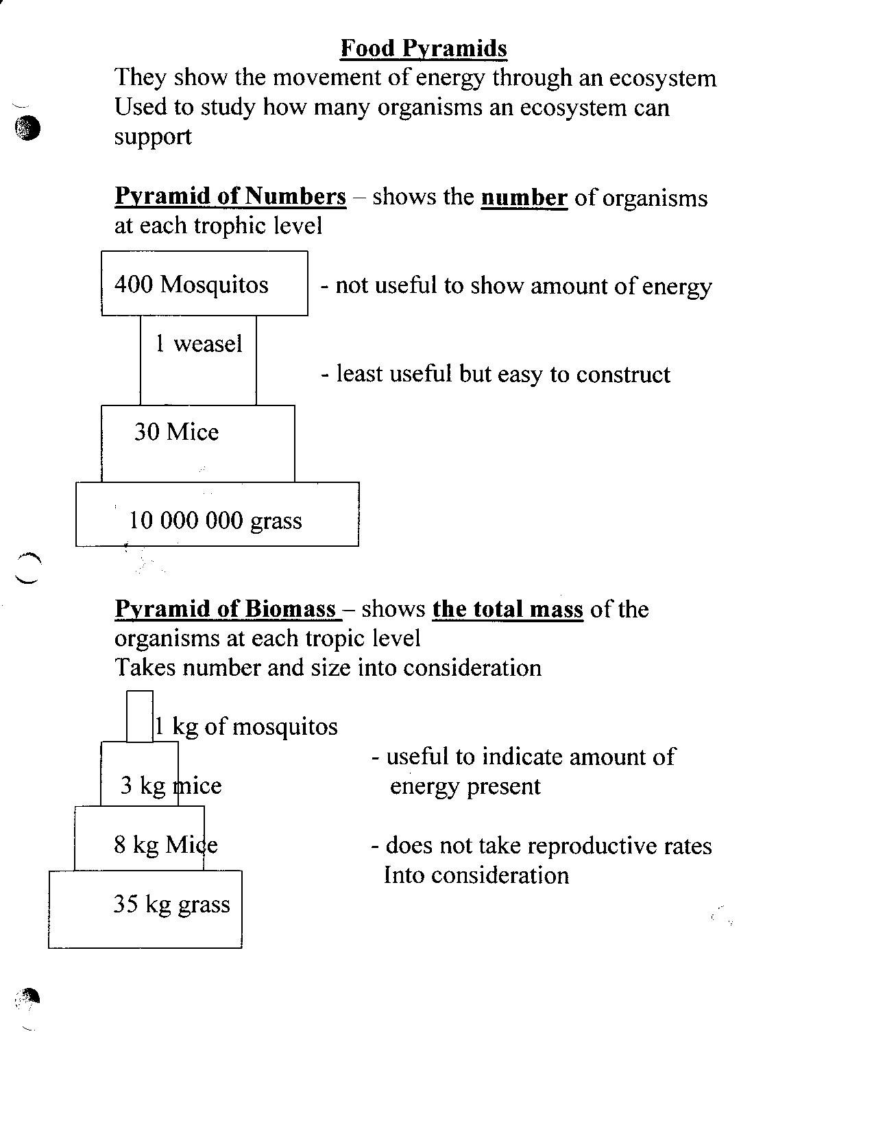 Bill Nye Energy Worksheet Answers