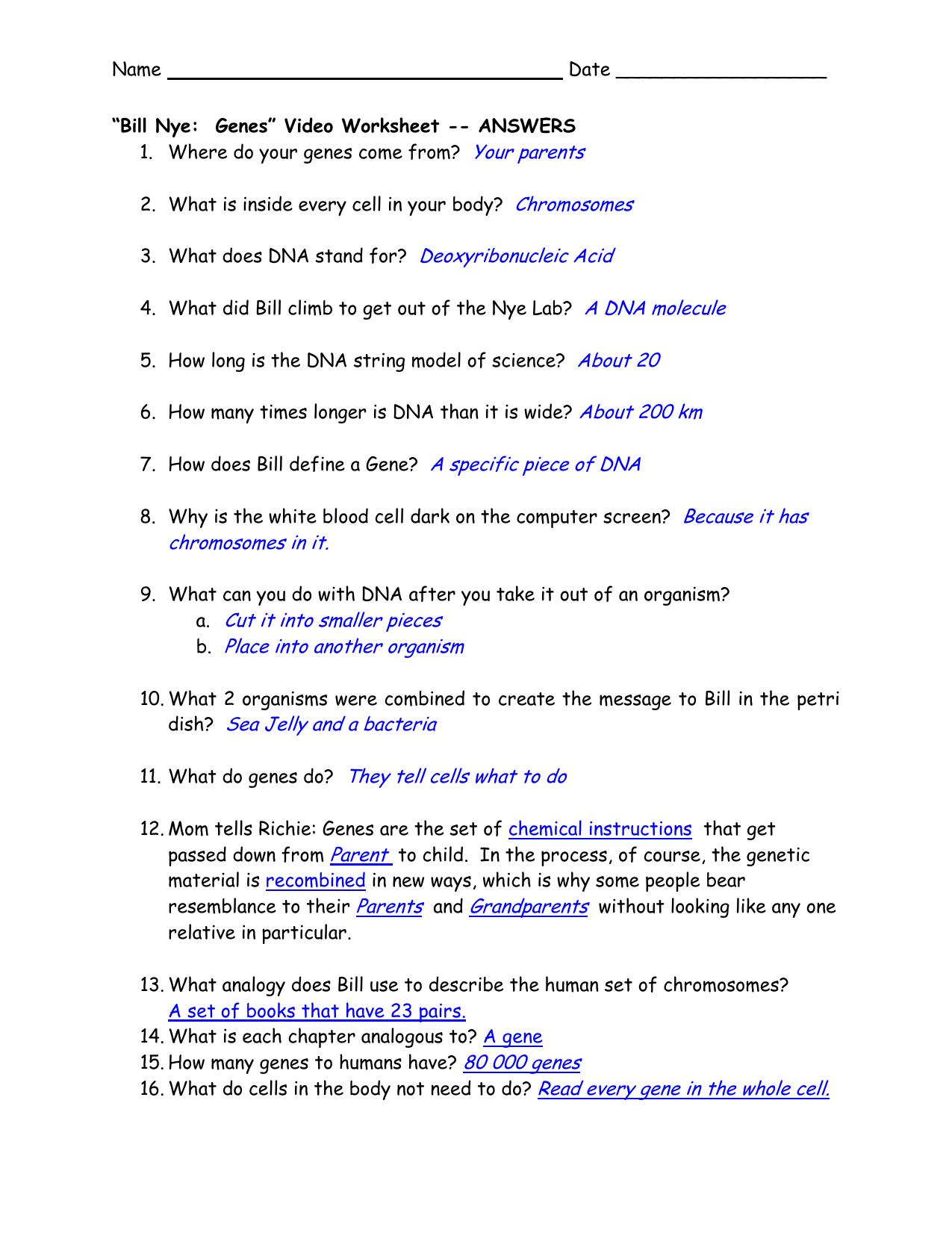 Bill Nye Genes Video Worksheet Answers