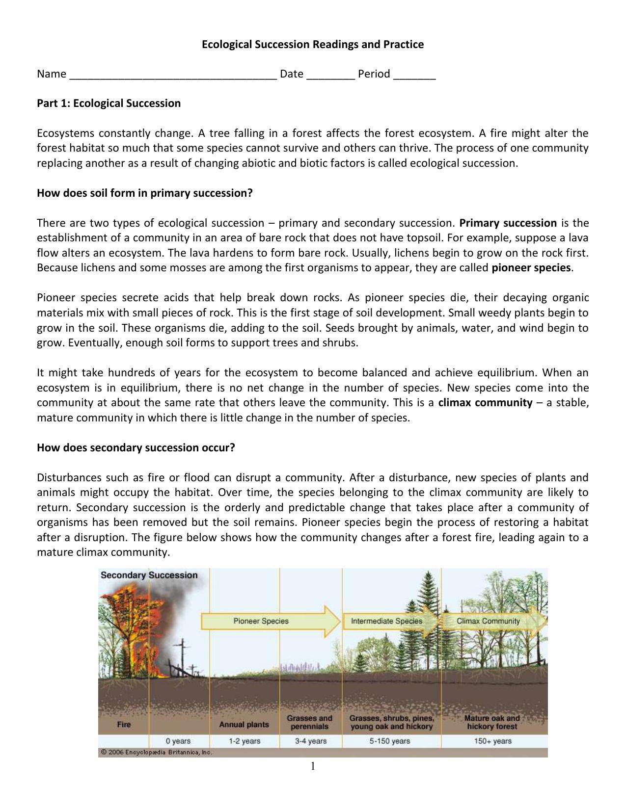 Ecological Succession Worksheet Answer Key