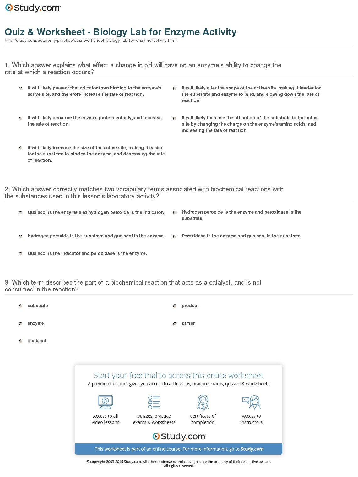 Biology Enzymes Worksheet Answers