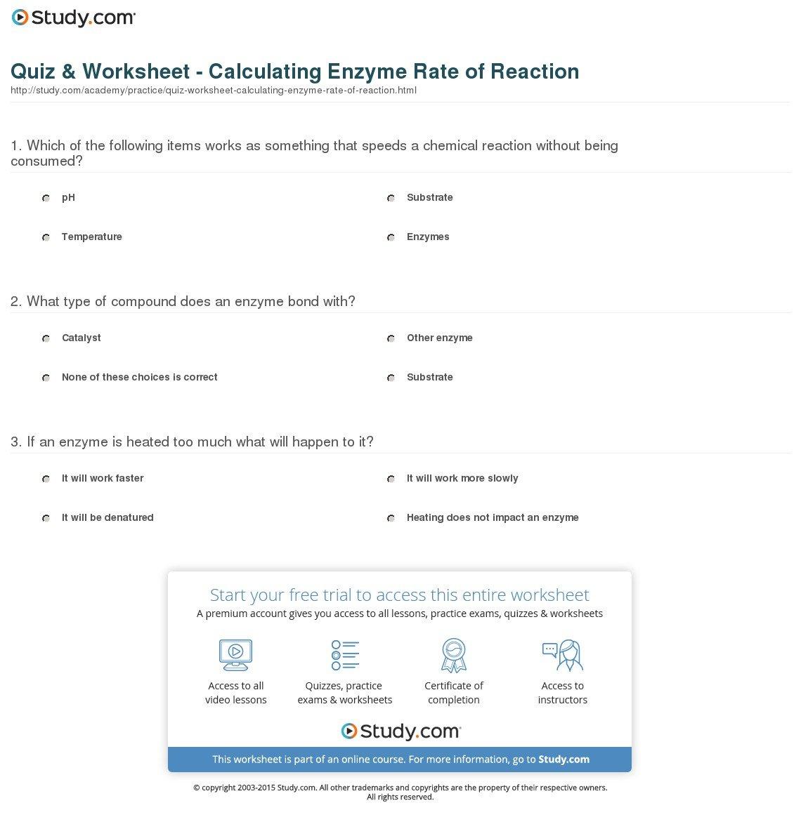 Enzyme Reactions Worksheet