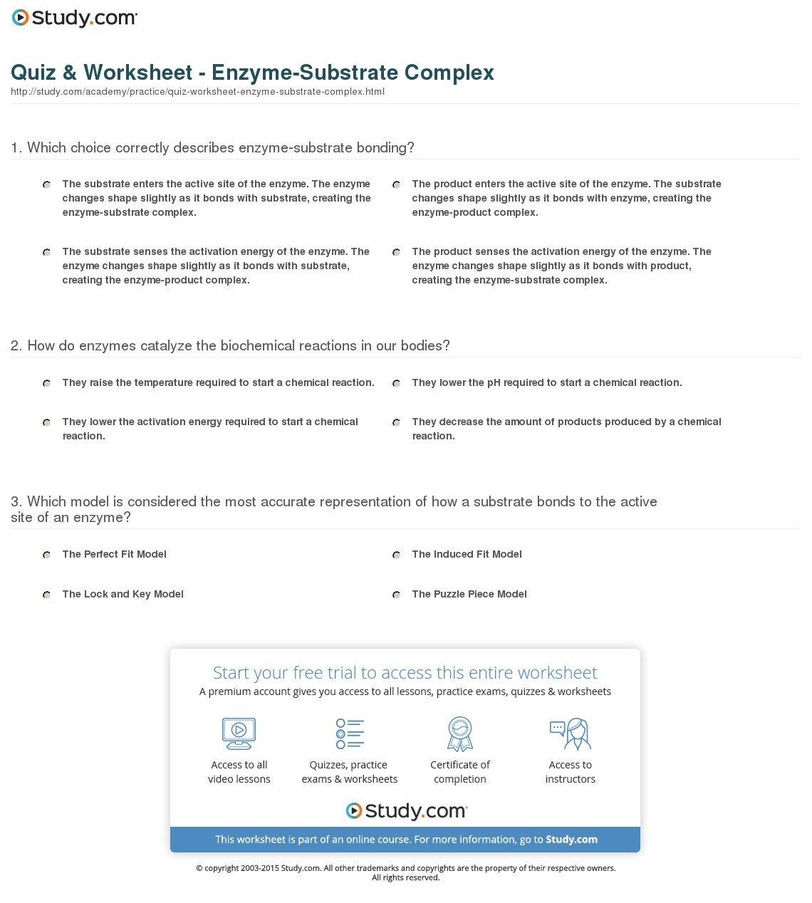 Enzyme Practice Worksheet
