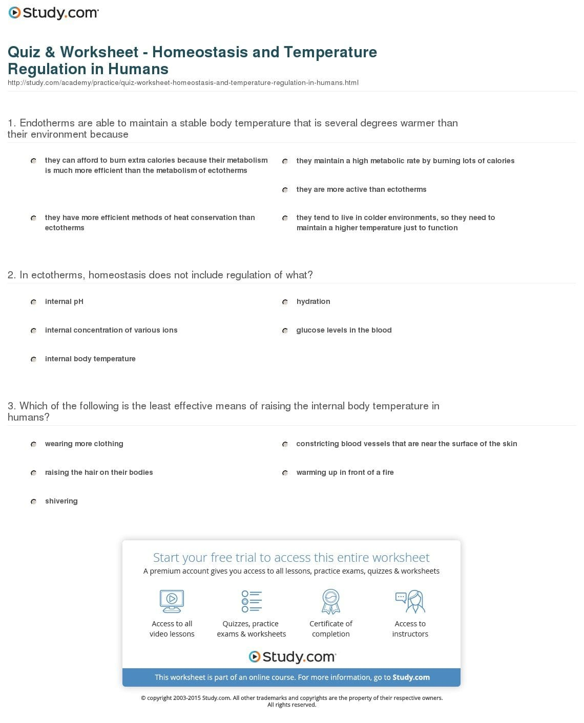 Skin And Temperature Control Worksheet Answers