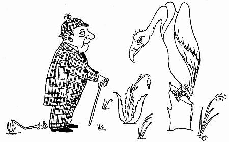 The Vulture, from More Beasts (for Worse Children) by Hilaire Belloc