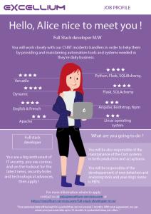 Full stack developer infographics