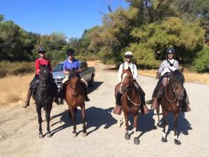 quiz ride 2015 5