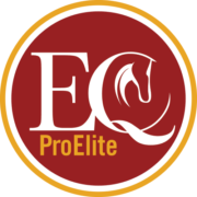 Excel EQ Pro Elite