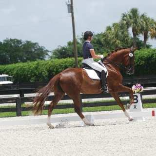 Excel Supplements Rider Alexandra Duncan
